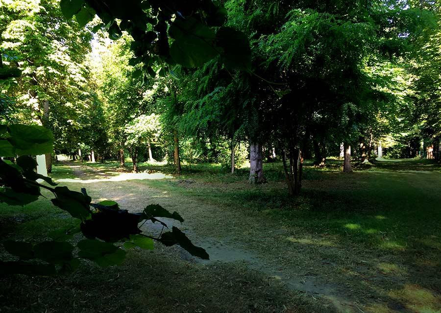 parc-3